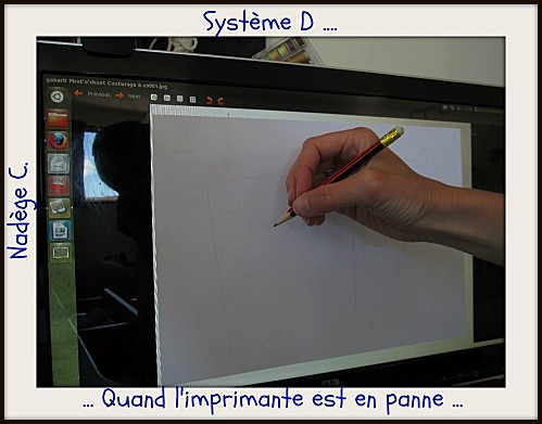 2 Systeme-D-Nadege