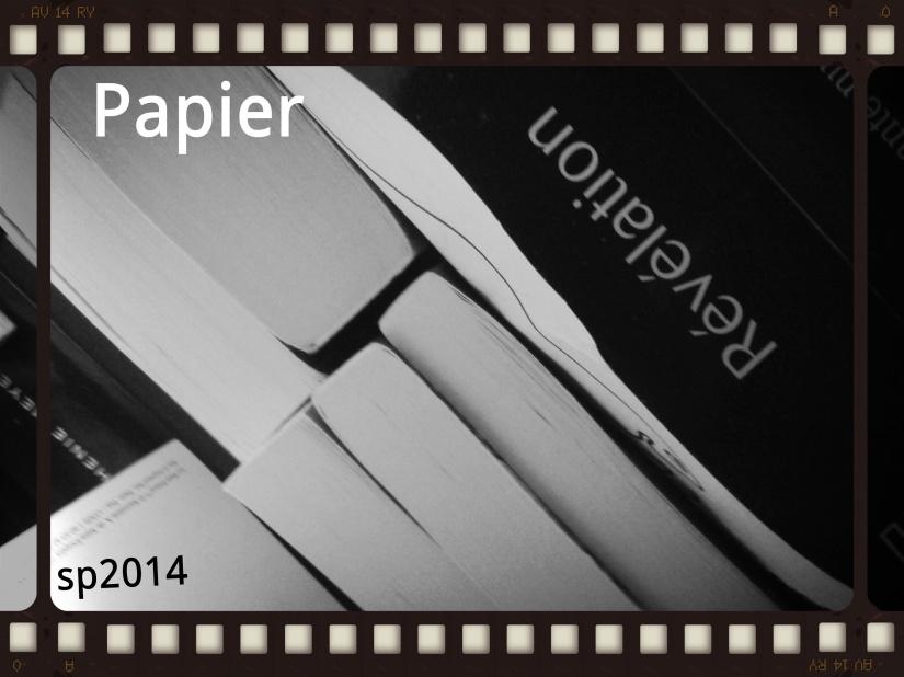 P52 S6 Le Papier